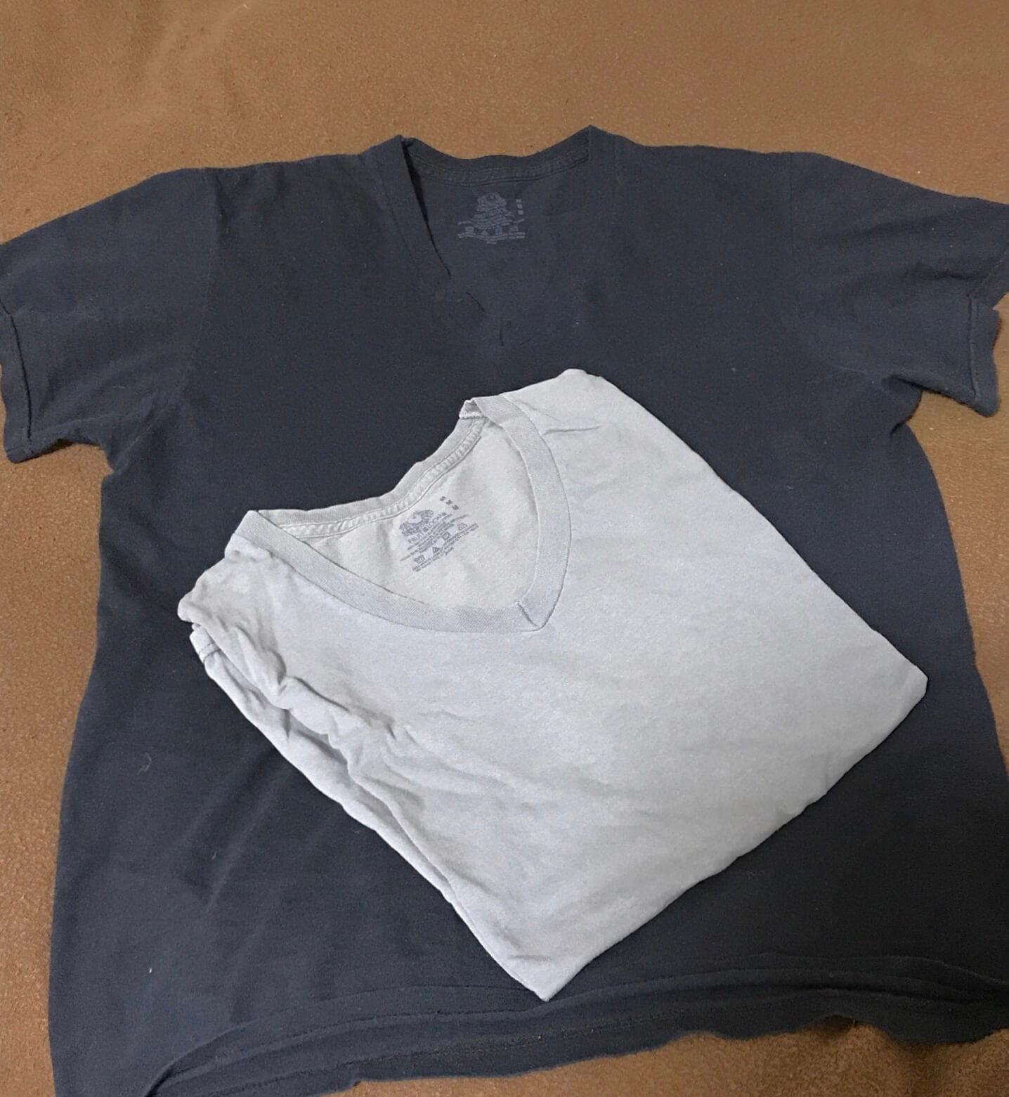 fruitoftheloom-tshirt2